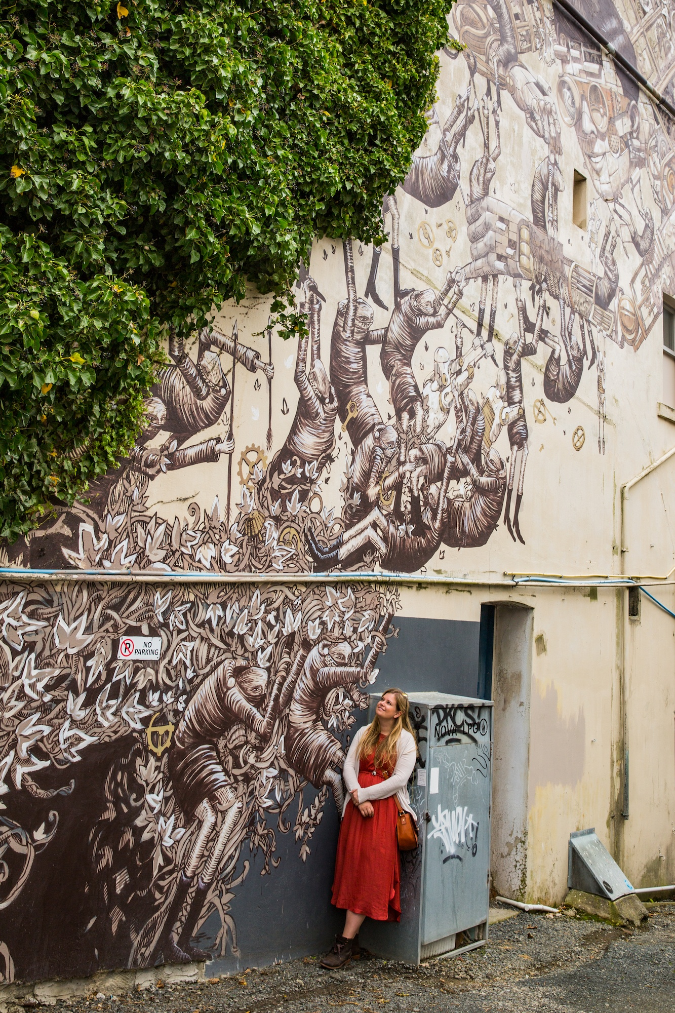 You are currently viewing The best street art in Dunedin, New Zealand