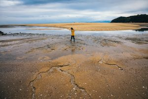 Read more about the article Slowing down and sustainable travel in the Abel Tasman